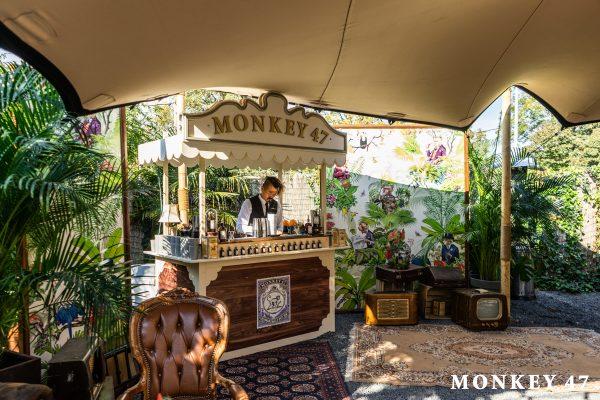 monkey47_shoot-1