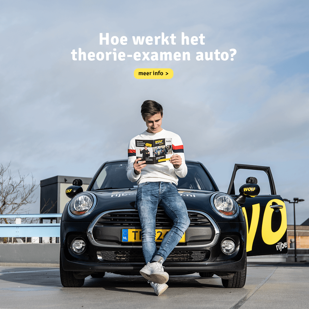 wolf campagne productie